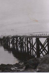Miguel Rubio Feliz, Premio Nacional de Peridismo 1979, Mención Fotografía, fotografia blanco y negro, Terremoto Valdivia 1960